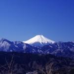 Mt Takao(高尾山) ~Pick up autumnal leaves!~